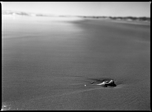 Cape Hatteras beach, North Carolina - Shot with the Mamiya m645 on Kodak 100 TMAX film