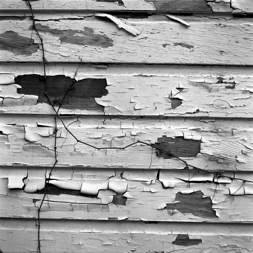 Chipping Paint in Harper's Ferry, WVA - Shot with the Yashica Mat 124G on Kodak 400 TMAX film